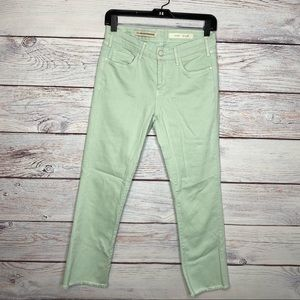Anthro Pilcro and the Letterpress Mint Skinny Jean
